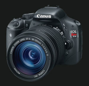 Canon Rebel T2i with 18-135 IS lens